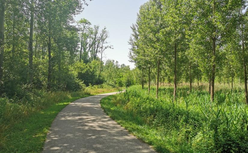 Berne-Camargue à vélo, Tag 4: Genève – Belley,95km