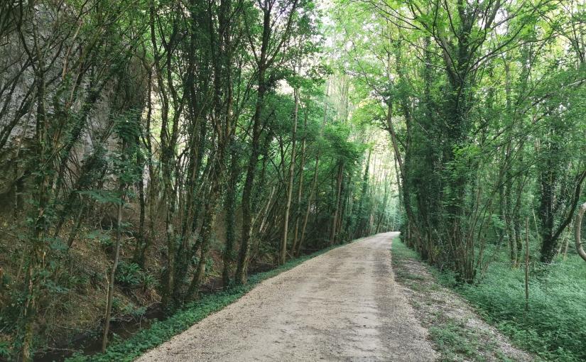 Berne-Camargue à vélo, Tag 6: Crémieu/Moirieu – Vienne, 95km